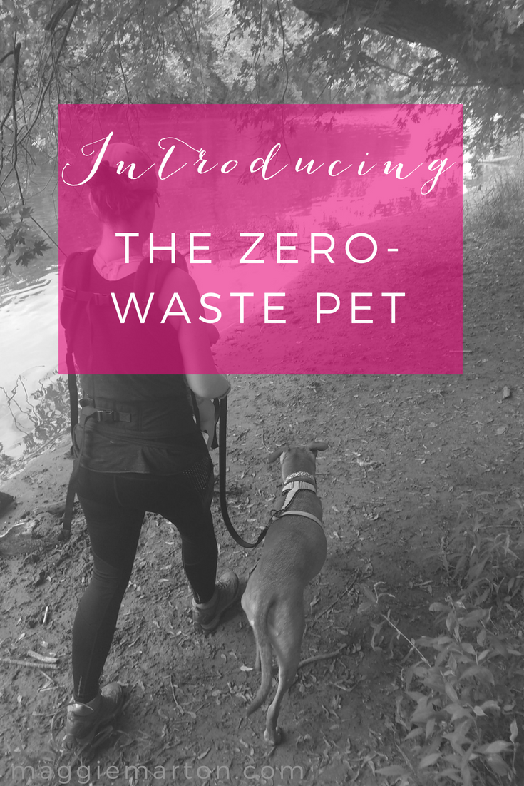 Introducing The Zero-Waste Pet