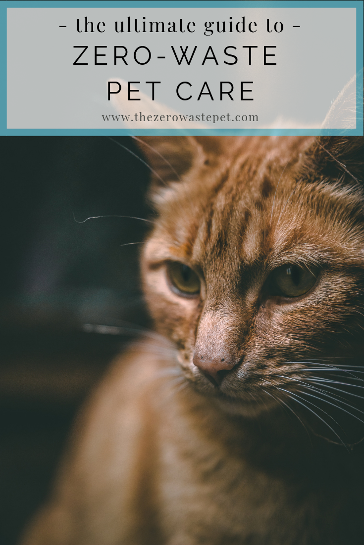 The Ultimate Guide to Zero-Waste Pet Care